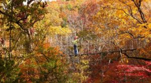 10 Picture Perfect Fall Day Trips To Take In Missouri