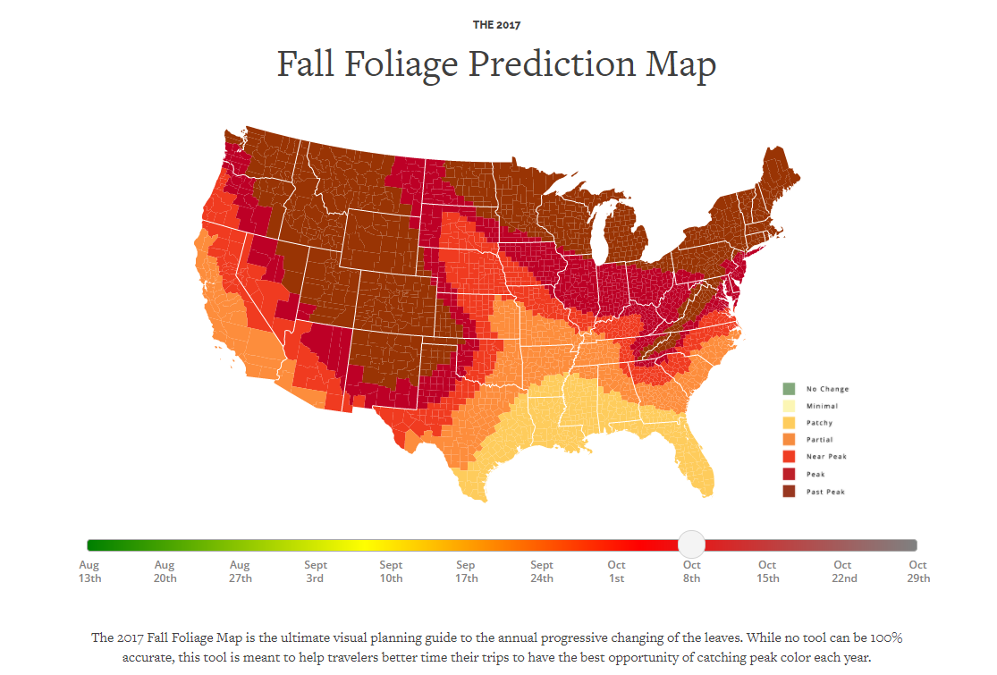 times  places  view fall foliage  delaware Arkansas Foliage Report 2019
