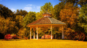 Here Are The Best Times And Places To View Fall Foliage In Alabama
