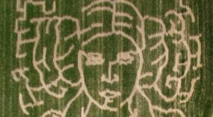 This Indiana Corn Maze May Be The Most Unique in the Country