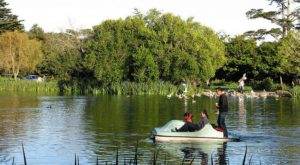 These 10 Underrated Lakes In Golden Gate Park Will Bring Out The Explorer In You
