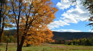 The Hidden Restaurant In New Jersey That's Surrounded By The Most Breathtaking Fall Colors