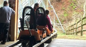 The Mountain Coaster In New York That's Simply Unbelievable In Fall