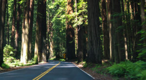 The Coolest Attractions in Northern California Not Enough People Visit