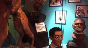 Ripley's Odditorium Museum In Dallas – Fort Worth Is Not For The Faint Of Heart
