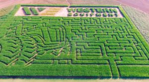 Get Lost In These 8 Awesome Corn Mazes In Oklahoma This Fall