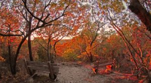 This One Easy Hike In Dallas – Fort Worth Will Lead You Someplace Unforgettable