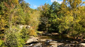 A Stroll Through These 9 Scenic Preserves In Alabama Will Bring You Closer To Nature