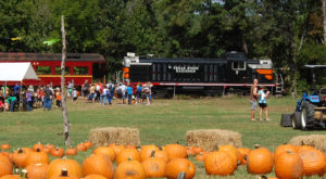 The Pumpkin Patch Train Ride In Texas That's Perfect For A Fall Day