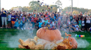 9 Harvest Festivals Around Minneapolis That Will Make Your Autumn Awesome