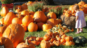 8 Fall Festivals In Kansas That Will Make Your Autumn Awesome