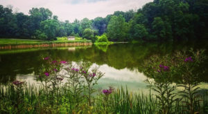 5 Amazing State Parks Around Indianapolis That Will Blow You Away