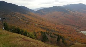 If You Only Take One Road In Vermont This Fall, Make It This One