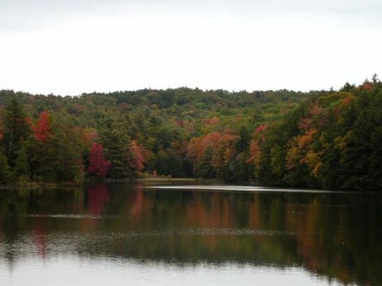 The 9 Secret Parks Of Vermont You Ve Never Heard Of But
