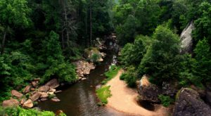 You'll Discover The Most Breathtaking Scenery Along These 10 Trails In Alabama