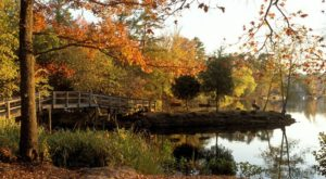 The One Hikeable Lake Near Dallas – Fort Worth That's Simply Breathtaking In The Fall