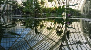 7 Beautiful Indoor Gardens You Never Knew Existed Around San Francisco