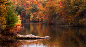 The One Hikeable Lake In Massachusetts That's Simply Breathtaking In The Fall