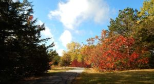 The Kansas Garden That Will Change The Way You Feel About Fall
