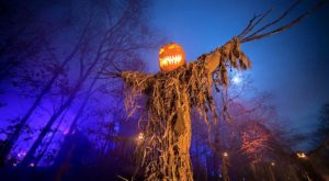 9 Halloween Towns In Minnesota That Will Terrify And Delight You In The Best Way Possible