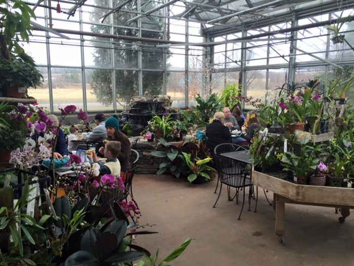 This Greenhouse Restaurant In Vermont Is The Most Enchanting Place To Eat
