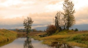 Few People Know These Hauntingly Beautiful Wetlands Are Hiding In Idaho