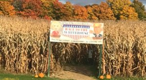 8 Corn Mazes In Vermont You'll Want To Get Lost In This Fall