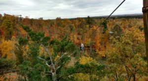 This Canopy Tour In Minnesota Is The Perfect Way To See The Fall Colors Like Never Before