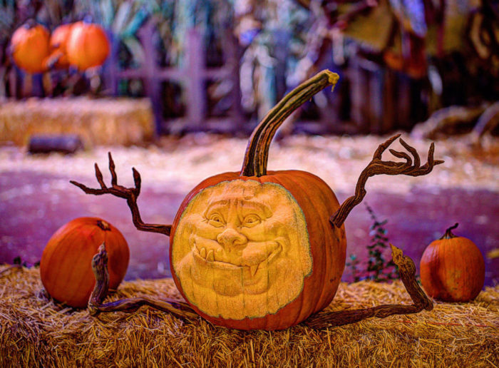 You Will Love This Magical Halloween Event In Arizona