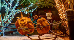 Don't Miss The Most Magical Halloween Event In All Of Arizona