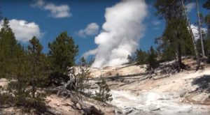 The World's Tallest Active Geyser Is Right Here In Wyoming And It's Not Old Faithful
