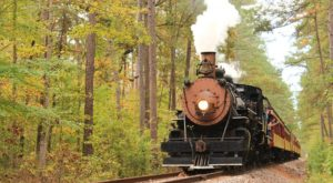 Take This Fall Foliage Train Ride Near Dallas – Fort Worth For A One-Of-A-Kind Experience