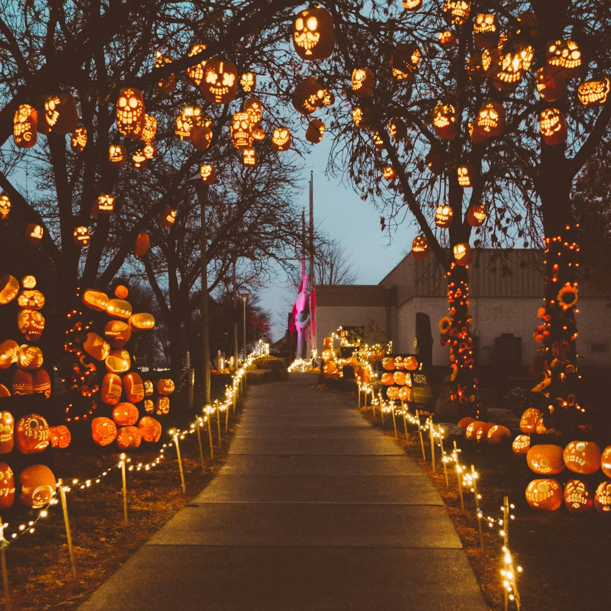Pumpkin Nights Is The Most Magical Halloween Event In
