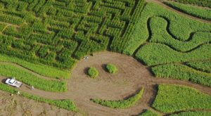 Get Lost In These 9 Awesome Corn Mazes Around Cincinnati This Fall