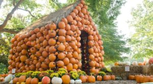 8 Harvest Festivals Around Nashville That Will Make Your Autumn Awesome