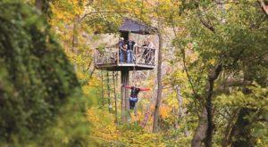 This Canopy Tour In West Virginia Is The Perfect Way To See The Fall Colors Like Never Before
