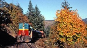 Take This Fall Foliage Train Ride Near Portland For A One-Of-A-Kind Experience