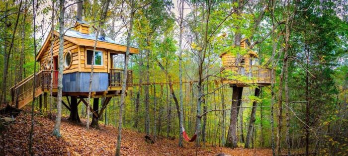 climb and sleep in the trees at this epic kentucky destination rh onlyinyourstate com treehouse foods ky treehouse foods ky