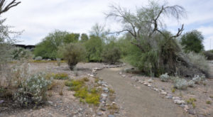 The Outdoor Discovery Park In Arizona That's Perfect For A Family Day Trip