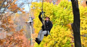 This Canopy Tour Near Pittsburgh Is The Perfect Way To See The Fall Colors Like Never Before