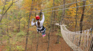 This Canopy Tour In Virginia Is The Perfect Way To See The Fall Colors Like Never Before