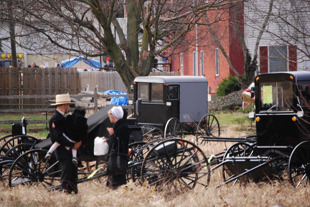 Mennonites In Kansas City
