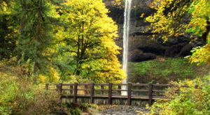 10 Short And Sweet Fall Hikes In Oregon With A Spectacular End View