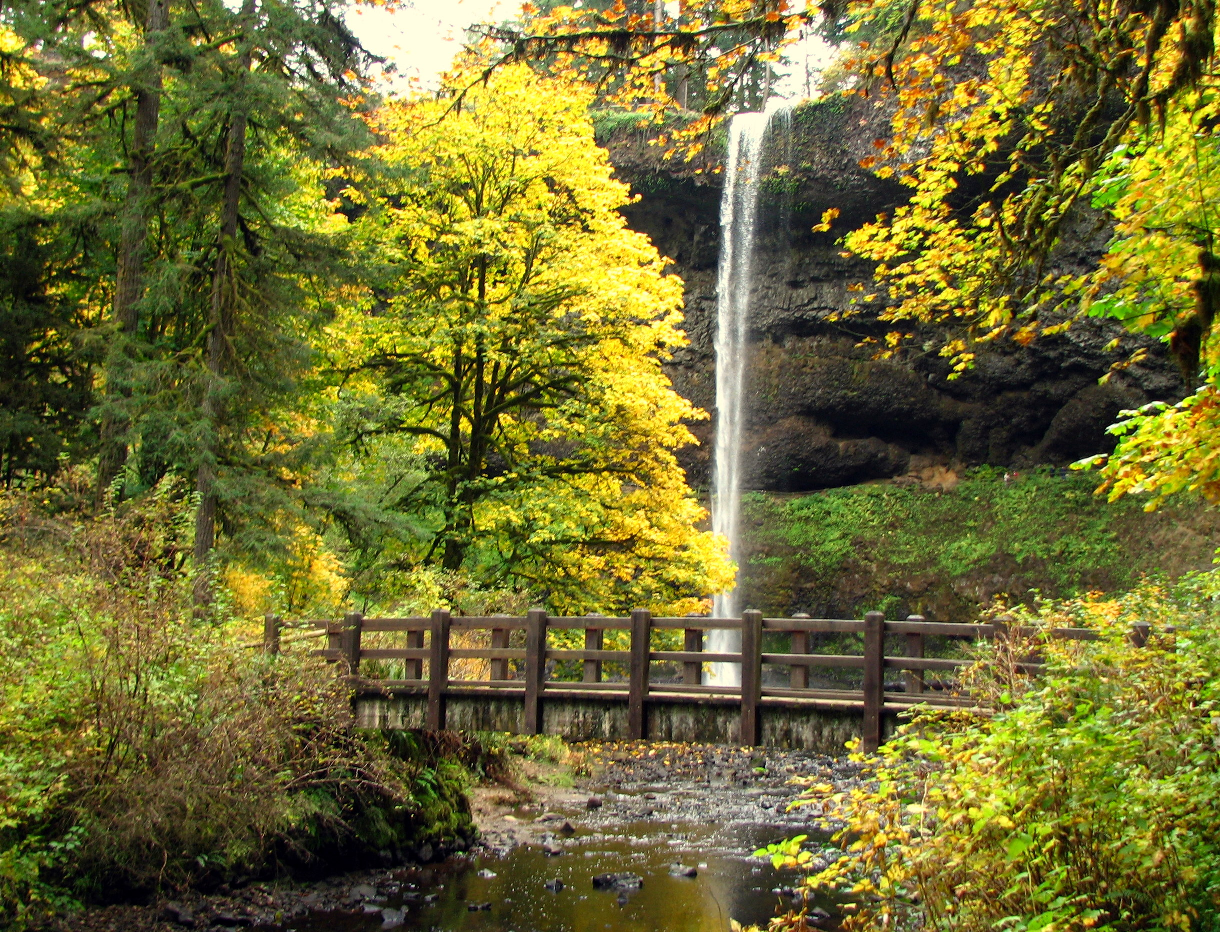 10 Short And Sweet Fall Hikes In Oregon With A Spectacular