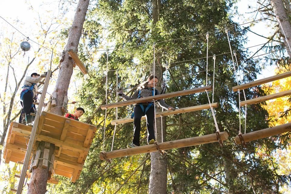 Tree Canopy Tour Massachusetts