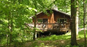 You Won't Forget Your Stay In These 7 One Of A Kind Massachusetts Cabins