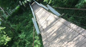 The Stomach-Dropping Suspended Bridge Walk You Can Only Find In Iowa