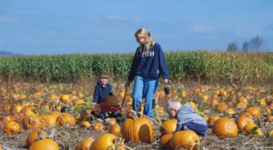 7 Harvest Festivals Around Indianapolis That Will Make Your Autumn Awesome