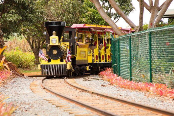 This Train Ride Through A Hawaii Pineapple Plantation Is A ...