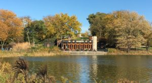 The Hidden Restaurant Near Chicago That's Surrounded By The Most Breathtaking Fall Colors